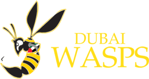 Digital Marketing Content Agency in Dubai Digital Marketing Agency in Dubai